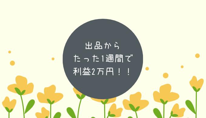 出品からたった1週間で利益2万円!!